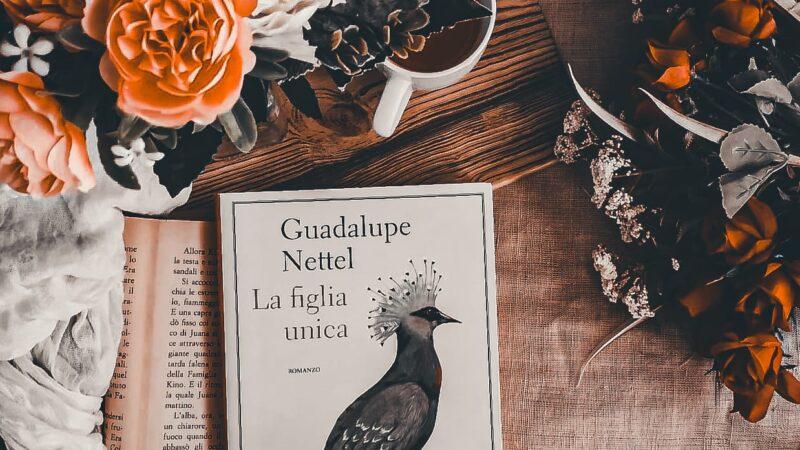 La figlia unica, Guadalupe Nettel – Recensione